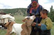 Ученые Сибири и ДФО обсудят проблемы сохранения традиционной культуры