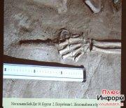 Итоги исследований VI археологического сезона в Долине царей